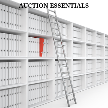 Auction Essentials Auction