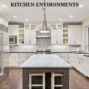 Kitchen Environments Auction