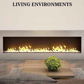 Living Environments Auction