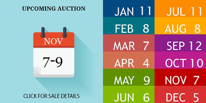 NOVEMBER 2020 AUCTION DATE